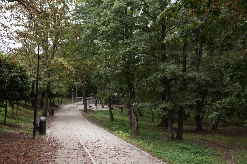 alejka w parku imienia kasiędza Tadeusza Kirschke zwanym parkiem Nadolnik