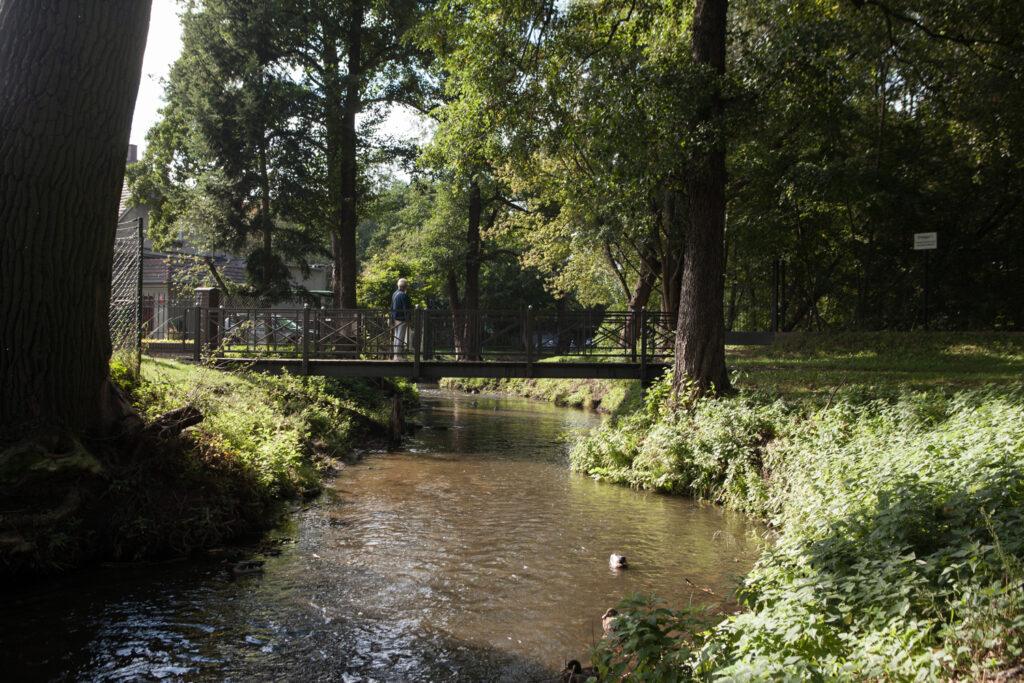 mostek nad rzeką główną na ulicy bartniczej rzeka główna zieleń nad rzeką